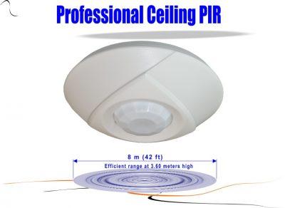Ceiling PIR
