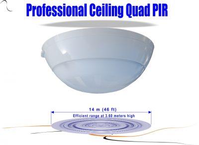 Quad Ceiling PIR